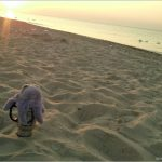 Про море и солнце