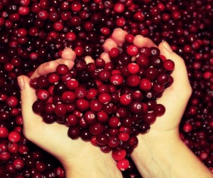 special-cranberries-valentines-day