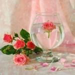 Роза и вода-2