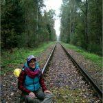 Чуть-чуть осеннего леса