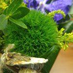 Зеленые гвоздики и музыкальные грибы