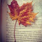 Бесконечные книги осени